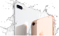 Iphone 8 de 64 gb en modelo a eleccion y color - Groupon