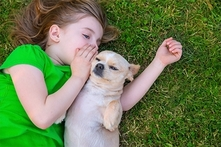 Desde $17.000 por spa para mascota pequeña, mediana o grande en Animal´s Care Center - Groupon