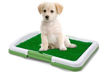 Bano para Mascotas Puppy Potty Pad