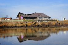 Scottish Seabird Centre Entry for 2 6 instead of 17 90 for entry for 2 adults to the award winning Scottish Seabird Centre or 10 for a family of 4 save up to 66 - wowcher
